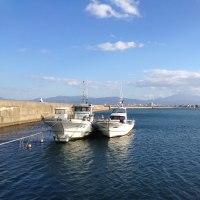 油川漁港での釣り