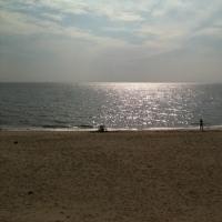 この間、あてどもなく、師崎にいったときの写真です