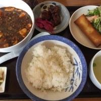 やっぱり満足する麻婆豆腐