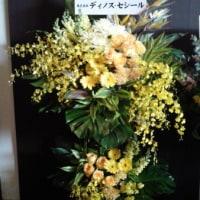 ライオンキング東京18 周年
