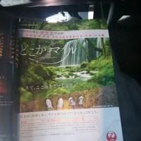 5月中旬、旭川空港へマイルー承前ー