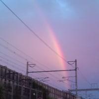 虹が出てた!