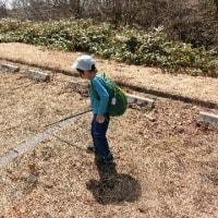 県民の森 道後山登山('17・4・15-16)