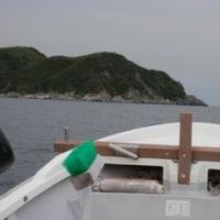 初島沖釣行