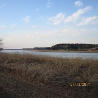 西印旛沼の冬景色