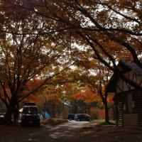 聖湖キャンプ場、北広島町 2016秋