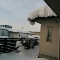 ドカ雪de雪かき三昧♪