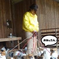 【第25回 トヨパピ 春のオフ会】