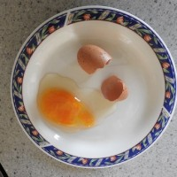 我が家の鶏1・2・3号、いずれかの珍卵騒動
