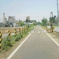 廃線の遊歩道