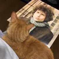 SundazedのBob Dylanモノラル・レコード