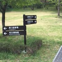 手軽で楽しいウォーキング!曽根丘陵公園へ行ってきました。
