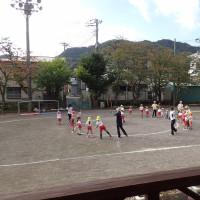 今日は、西伊豆の幼稚園に出かけてコケ盆栽と自然クラフトを楽しみました。