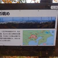 高尾山 2016