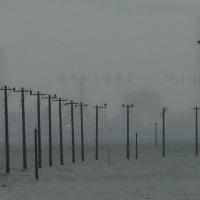 霜月 東京湾