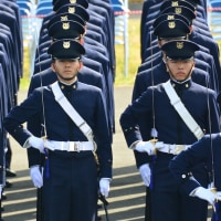 平成28年度自衛隊記念日 観閲式 概要