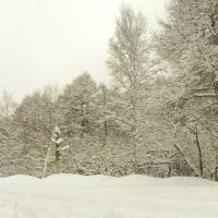 蓼科山荘より 雪で始まった4月