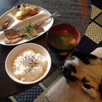秋刀魚三枚おろしの米粉焼き