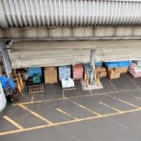 2017・2・24 成り行きで横浜市中央卸売市場(横浜南部市場)で昼飯。木村屋さんのとんけい定食は美味い。
