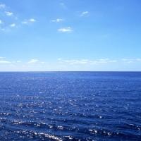 5月17日(水)のつぶやき