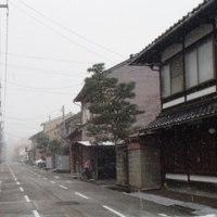 いよいよ、雪となりました。彦三1番丁。