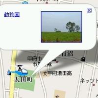 Google Maps API でキャラ移動