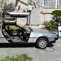 DeLorean DMC-12 1981-�����ƥ�쥹�μ�������Ω�ĥǥ�ꥢ�� DMC-12