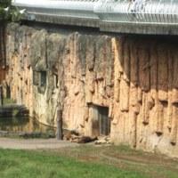 多摩動物園・・・・・2