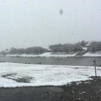 11月24日(木) 雪でも開所・・・