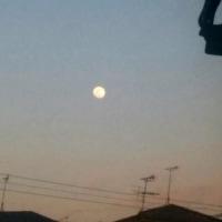 月は東に日は西に