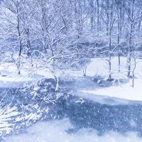 凍てつく世界