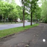 学園前駅から石山まで徒歩往復の旅14