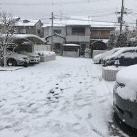 雪合戦雪だるま