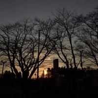 2月17日、午前7時過ぎの空模様