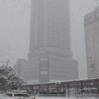2017年 初雪~JR広島駅南口
