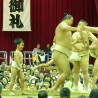大相撲水戸場所~チビッ子相撲(子供の稽古)~