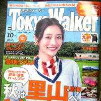 TokyoWalker 2016 October。