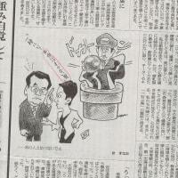 蓮舫氏が1面コラム、マンガ、川柳、政治面で批判・揶揄さる