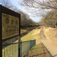 野川公園往復ジョグ