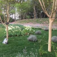 里山ガーデンに初めて行ってみました♪