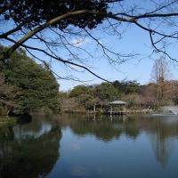 高岡市 古城公園