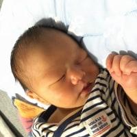 男の子が産まれました。