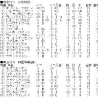 「フラワーC」&WIN5対象レースのカバラ暗示付き出馬表