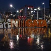 NIIGATA光のページェント