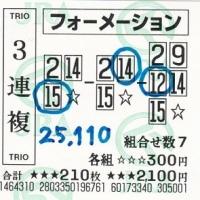 2017年万馬券(009)