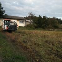 蕎麦の収穫が進んでいます(*^.^*)