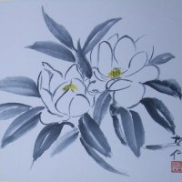 梅雨時に咲くタイサンボクの花(水墨画)