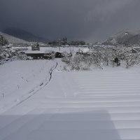 もう雪は遠慮します・・・