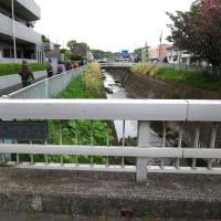4月26日日野市ウォーキング-6月「生田緑地」下見03