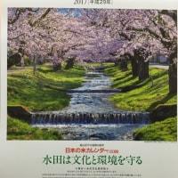 来年の「日本の米カレンダー」が届きました。美しい風景に心が癒されます。